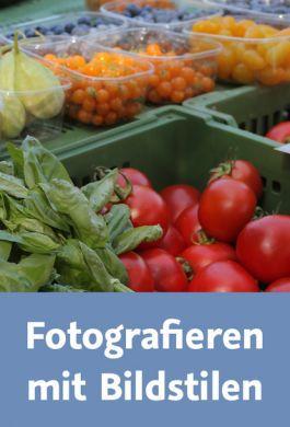 Video2Brain - Fotografieren mit Bildstilen