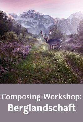 video2brain -  Composing-Workshop: Berglandschaft